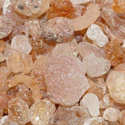 Encens en grains gomme arabique