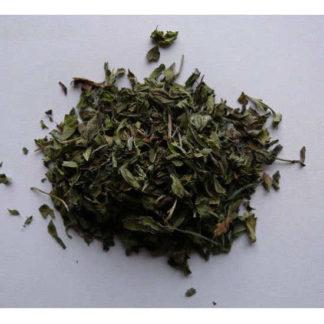 Herbes menthe poivrée
