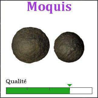 Moquis
