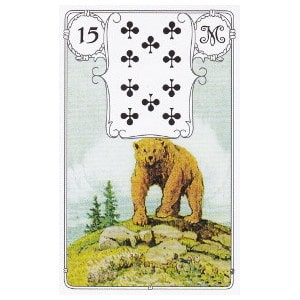 L'ours petit lenormand